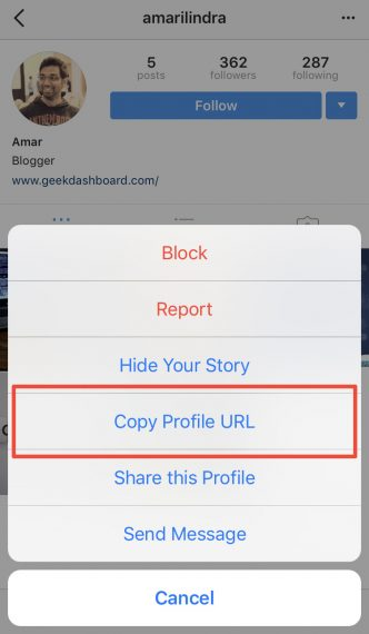 How to Download or View Instagram Profile Picture of Others in Full Size