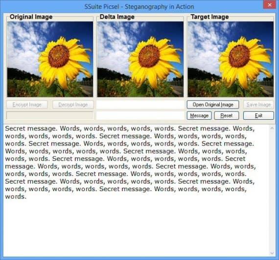 ssuite piscel steganography software