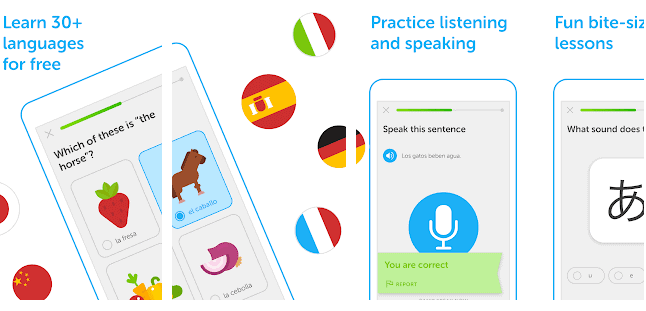 Duolingo educational app for Android
