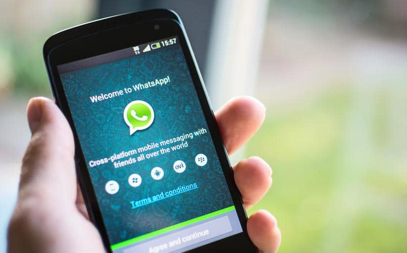 WhatsApp Android Beta App to bring new features to its testers