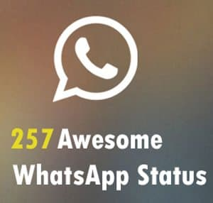 WhatsApp status update collection